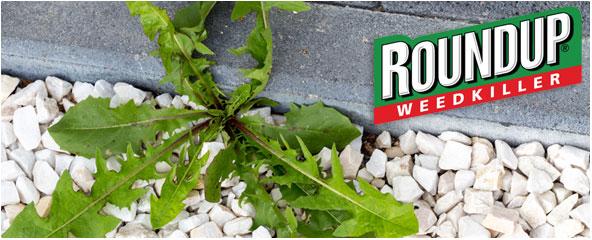 Roundup onkruidverdelger online kopen - Aanbieding !